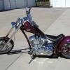 2005 Steed Appaloosa